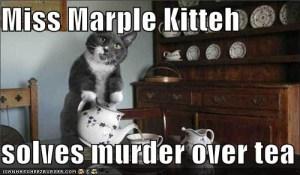 marple kitteh