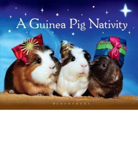 guinea pig nativity