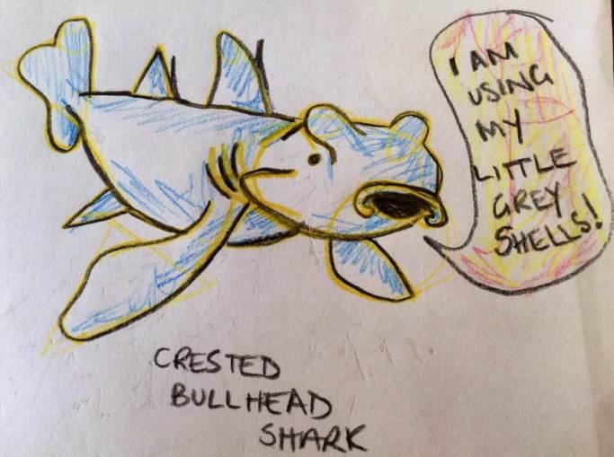 crested bullhead