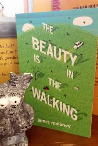 the beauty is in the walking giveaway