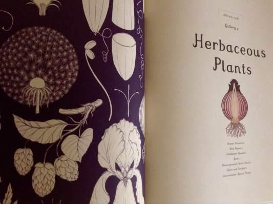 botanicum-page-spread-1