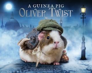 guinea-pig-oliver-twist