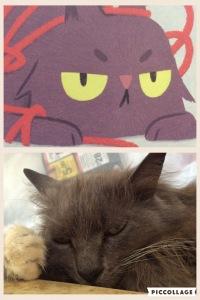 cat-knit-comparison