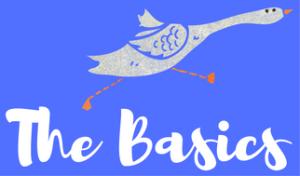 the-basics-wild-goose-challenge